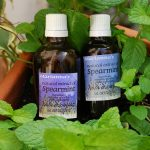 Natural extract of Spearmint (Mentha Viridis)