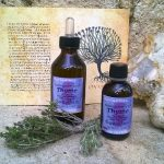 Natural extract of Thyme (Thymus Vulgaris)