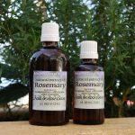 Natural extract of Rosemary (Rosmarinus Officinalis)